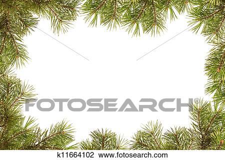 Stock Photo of Border, frame from christmas tree branches k11664102 ...