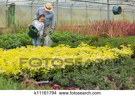 Grandfather And Child Watering Plants In Greenhouse