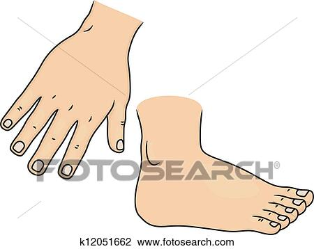 Clipart of Hand and Foot Body Parts k12051662 - Search Clip Art ...