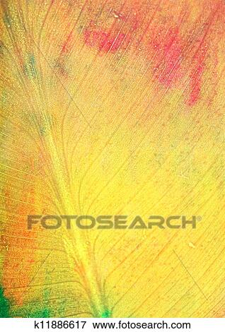 picture of leaf like fall themed background red green and yellow