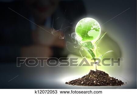 Plante Verte Sur La Terre Dessin
