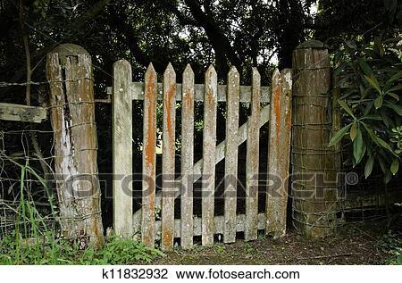 A Grunge Wooden Door, Vintage Gate   Entrance Of Garden.