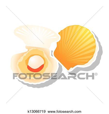 クリップアート ホタテ貝 ベクトル K13066719 クリップアート