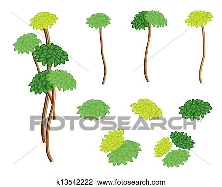 A Set of Isometric Yucca Tree and Dracaena Plant Clipart ...
