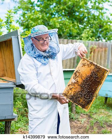 apiculteur 79