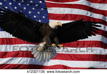 United States Flag With Eagle Background