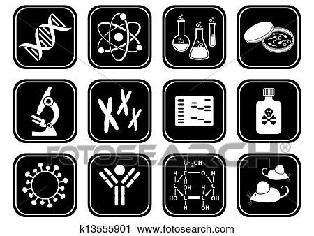 Biologie wissenschaft purves biologie