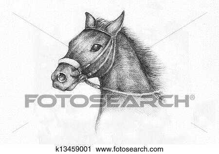 Bleistift Zeichnen Von A Pferd Clipart K13459001