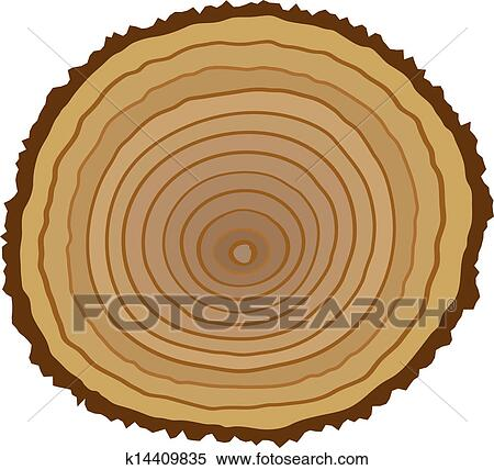 Cross Section Of Tree Stump Clipart K14409835 Fotosearch