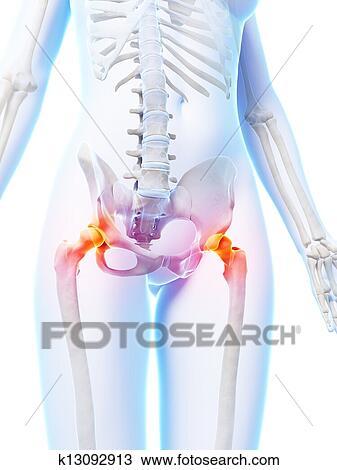 Dibujo - destacado, cadera, articulaciones k13092913 - Buscar Clip ...