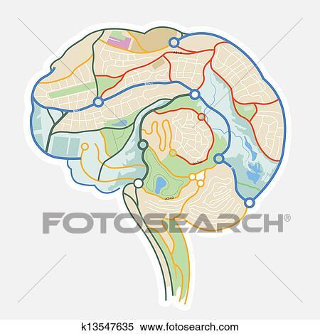 Gehirn Landkarte Clipart K13547635 Fotosearch