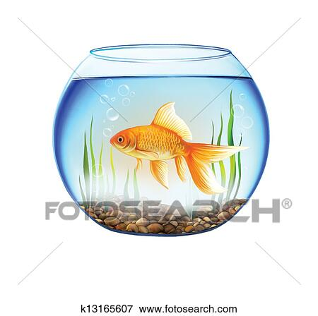 Banque d 39 illustrations poisson or dans a rond for Grand aquarium rond