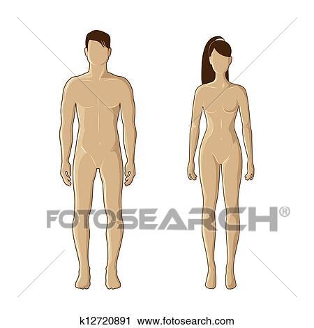 Clipart Mâle Femelle Mannequins K12720891 Recherchez Des Clip