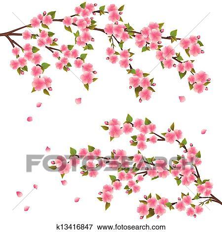 clipart sakura fleur japonaise cerisier sur. Black Bedroom Furniture Sets. Home Design Ideas