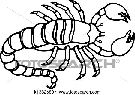 Dessin D Un Scorpion banque d'illustrations - scorpion, dessin ligne k13825807