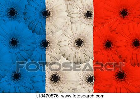 Stock Images Of Stylized National Flag Of France With Gerbera