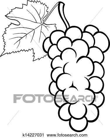 Clipart - trauben, abbildung, für, ausmalbilder k14227031 - Suche ...