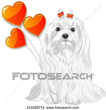 clipart of valentine card with dog maltese and hearts k12529715 rh fotosearch com fire maltese clipart maltese poodle clipart
