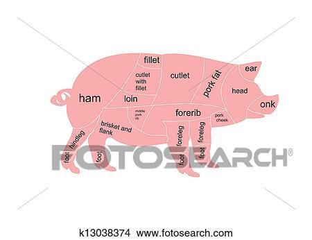 Clipart of vector pork chart k13038374 search clip art