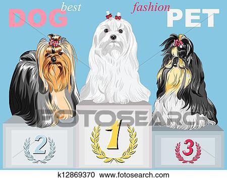 Mode Hund