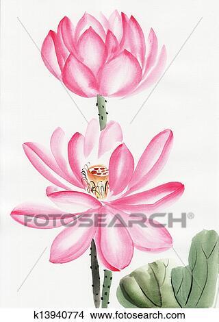 Watercolor Painting Of Lotus Flower Stock Illustration K13940774