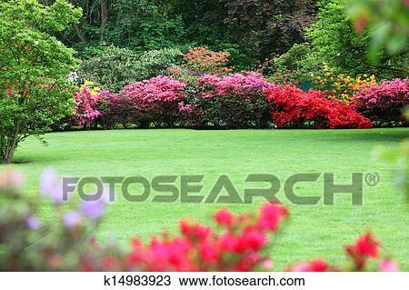 Beautiful Garden With Flowering Shrubs Stock Image K14983923