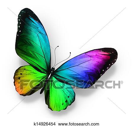Dessins couleur papillon k14926454 recherche de clip - Papillon dessin couleur ...