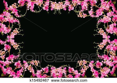 Image Fleur Rose Sur A Noir Arriere Plan Coral Vigne