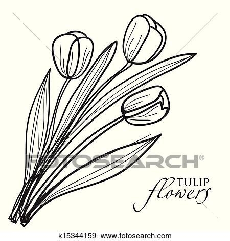 clip art of tulip flowers sketch k15344159 search clipart