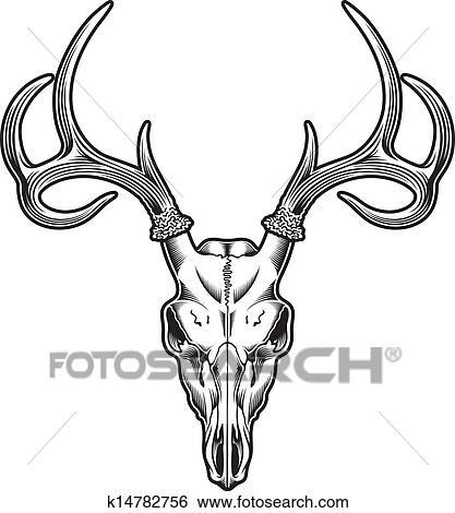 Clip Art - venado, cráneo, vector k14782756 - Buscar Clip Art ...