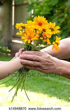 stock photography of young hand giving a flowers to senior s hand