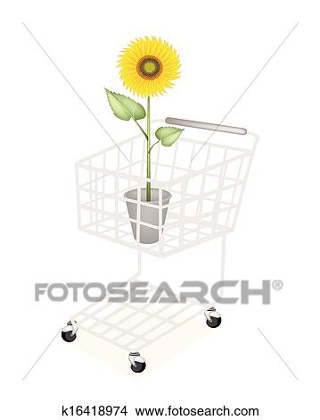 An Elegant Perfect Sunflower In A Clipart__k16418974