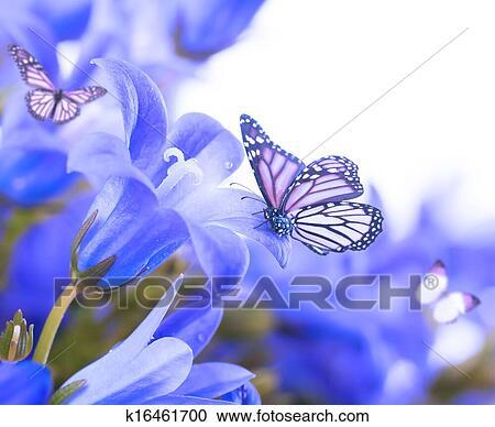 Fiori Su Uno Sfondo Bianco Blu Scuro Mano Fascette E