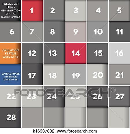 Menstrual Cycle Calendar.Menstrual Calendar Clipart