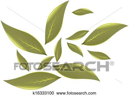 Clipart of tea leaves vector illustration k16333100 search clip clipart tea leaves vector illustration fotosearch search clip art illustration murals thecheapjerseys Image collections