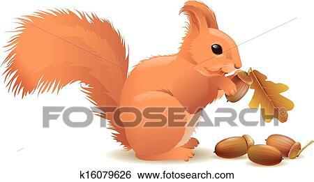 Clip Art Wiewiórka Z żołędzie K16079626 Szukaj Kliparty