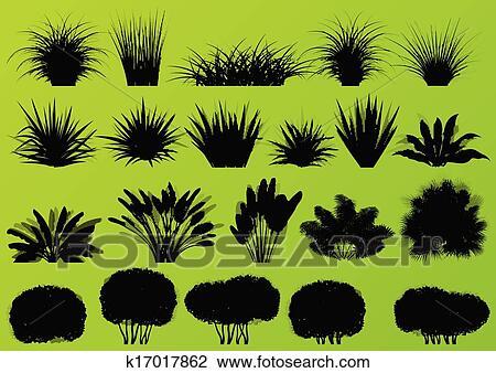 Clipart exotische jungle struiken gras riet palmboom wild