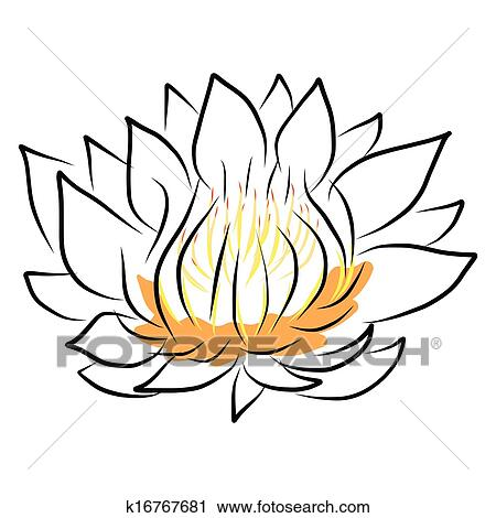 Hand Drawing Water Lily Lotus Flower Clipart K16767681