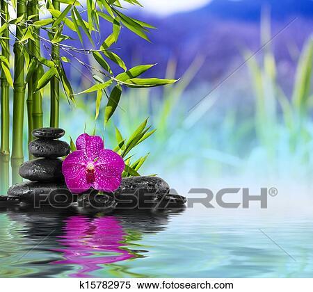 Stock Bild Lila Orchidee Steine Und Bambus K15782975 Suche