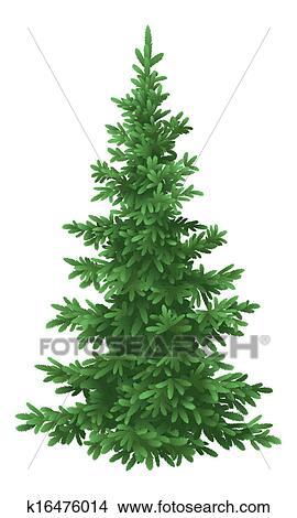 Disegni Natale Albero Abete Isolato K16476014 Cerca