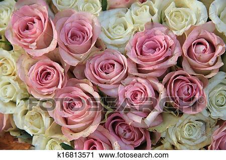 Rose Et Blanc Roses Dans A Nuptial Arrangement Banque Dimage