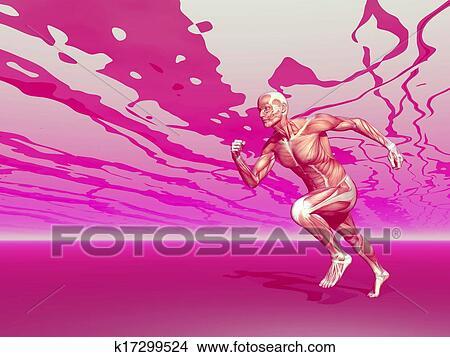 走っている男性 筋肉 3d Render イラスト K17299524 Fotosearch