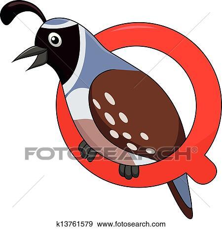 Alfabeto q con quaglia cartone animato clip art k13761579