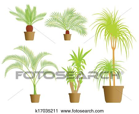 Set of different house plants in cute pots.