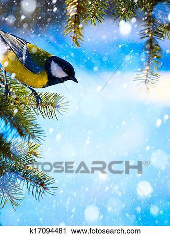 Stock Fotografie - kunst, weihnachtskarte, mit, meisen, auf, dass ...