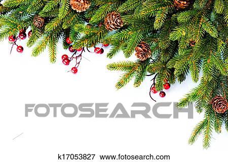 Immagine Natale Sempreverde Albero Abete Bordo Disegno