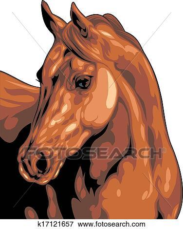 Clipart t te cheval k17121657 recherchez des cliparts des illustrations des dessins et - Clipart cheval ...