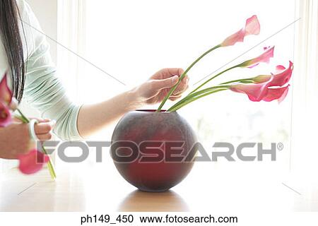 Close-up of a woman\u0027s hand putting flowers in a flower vase  sc 1 st  Fotosearch & Close-up of a woman\u0027s hand putting flowers in a flower vase Stock ...