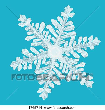 Closeup of a snowflake Picture
