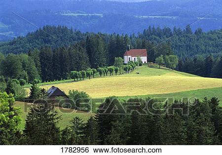 Schwarzwald Deutschland Stock Fotograf 1782956 Fotosearch